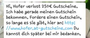 Fake-Gewinnspiel WhatsApp Hofer