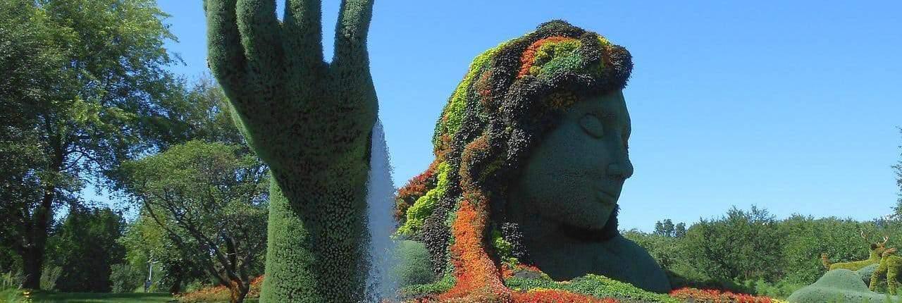 Evergreen Content - Garten